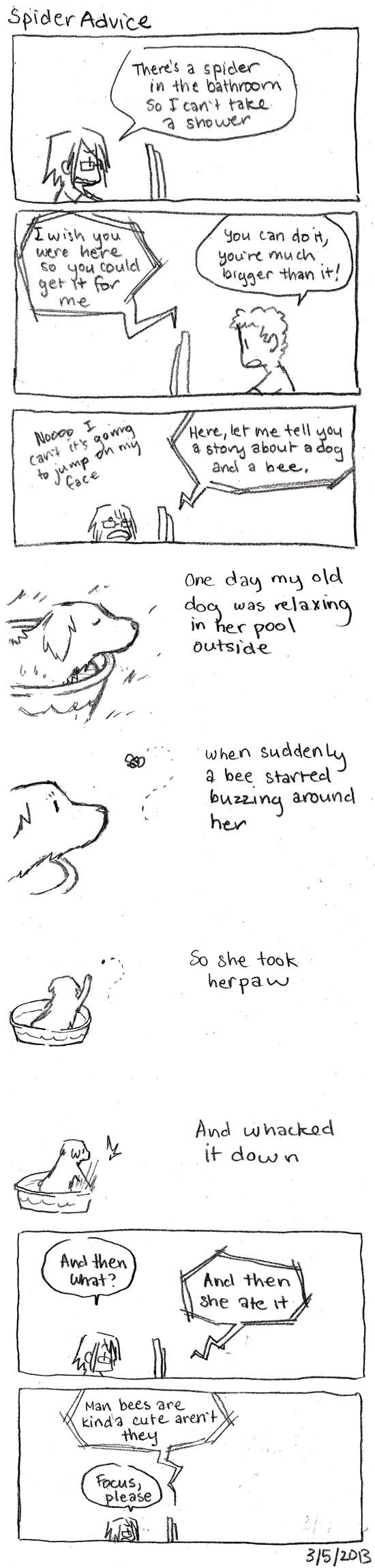 Spider Advice