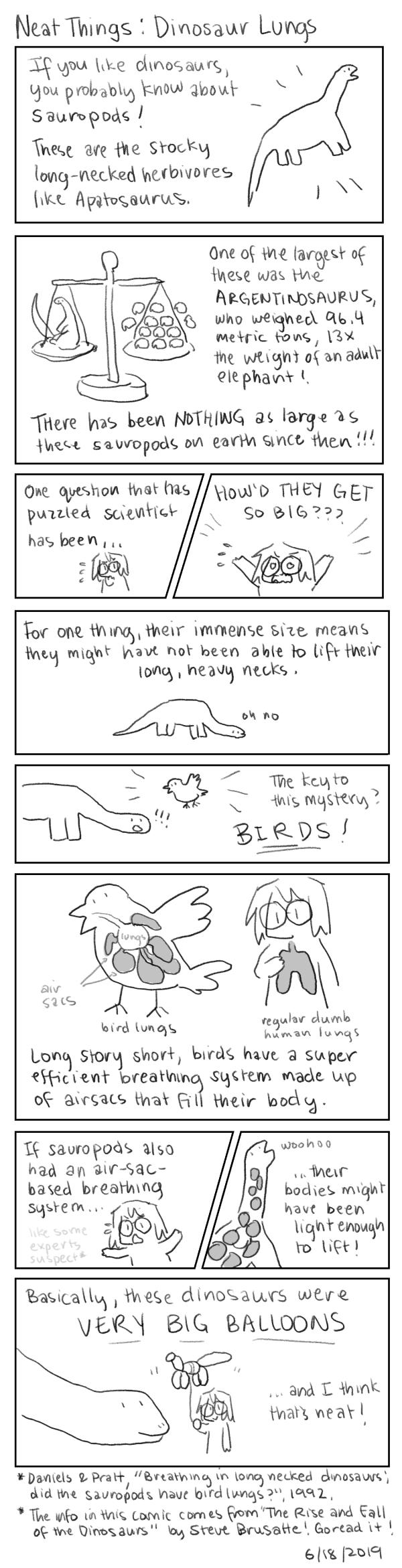 Neat Things: Dinosaur Lungs